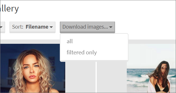 Download images plugin for Photo Selector - 2